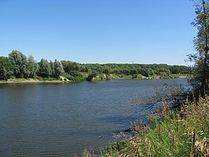 Moksha river in Yermishinsky District 02.jpg