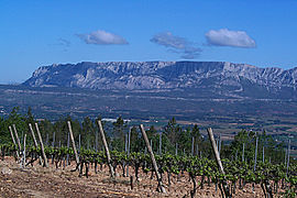Montagne Sainte-Victoire and vineyards, seen from the slope south of Trets