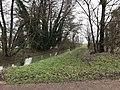Montbarrey (Jura, France) le 5 janvier 2018 - série 2 - 1.JPG