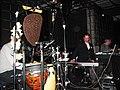 Moritz von Oswald Trio, live in 2010.jpg