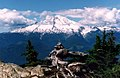 Mount Baker from Shannon Butte.jpg