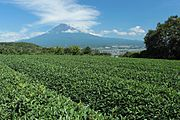 Mount Fuji 20120909 b.jpg