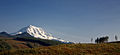 Mount Rainier from SR 162.jpg