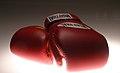 Muay Thai gloves.jpg