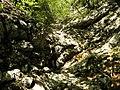Mudna dol - panoramio (13).jpg