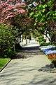 Muenster Botanischer Garten 6006.jpg