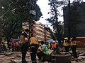 Multifamiliar Tlalpan - Terremoto de Puebla de 2017 - Ciudad de México - 1.jpg
