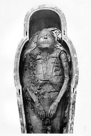 Masaharta - Mummy of Masaharta, found in DB320