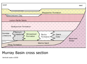 Murray Basin Section.png