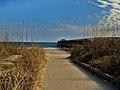 Myrtle Beach State Park.jpg