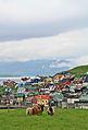 Nólsoy, Faroe Islands 01.jpg