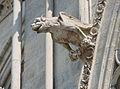 ND Amiens Gargouilles 19.jpg