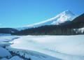 NRCSOR00014 - Oregon (5727)(NRCS Photo Gallery).tif