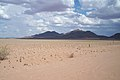 Namib desert (5832935083).jpg