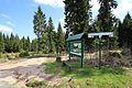 Naturschutzgebiet Großer Kranichsee in Sachsen...2H1A9091WI.JPG