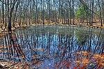Ninigret National Wildlife Refuge. Credit- USFWS (13873576103).jpg