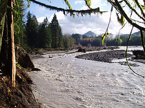 Nisqually River - Nisqually River near Ashford during a flood in 2006 that destroyed a campground in Mount Rainier National Park.