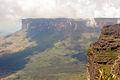 No topo do Monte Roraima.jpg