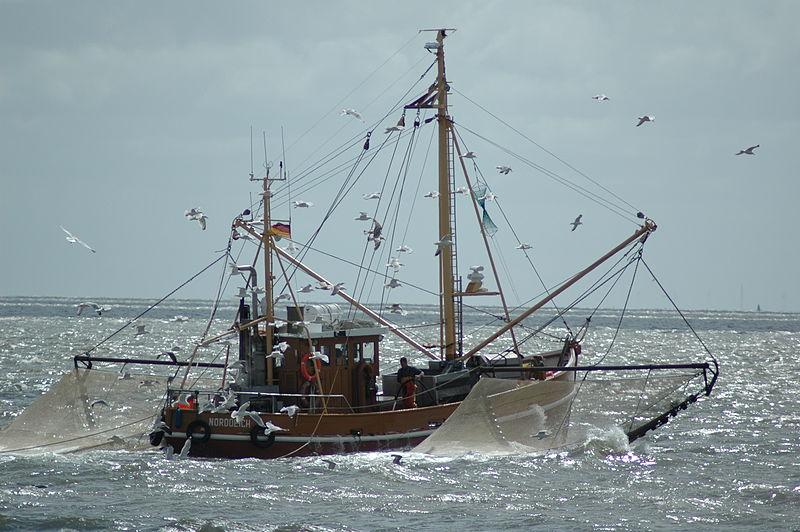 Datei:Norderney Fischkutter.jpg