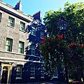 Number 10 Downing Street and trees.jpg