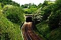 Oakengates Railway Tunnel - geograph.org.uk - 1305927.jpg