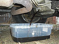 Oil Change oil pan 2005 gmc suv.JPG