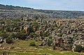 Okolí řeky Treurrivier - panoramio.jpg