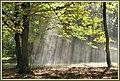 Oktobersonne (45269383231).jpg