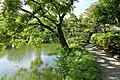 Old Yasuda Garden - Tokyo, Japan - DSC06499.jpg