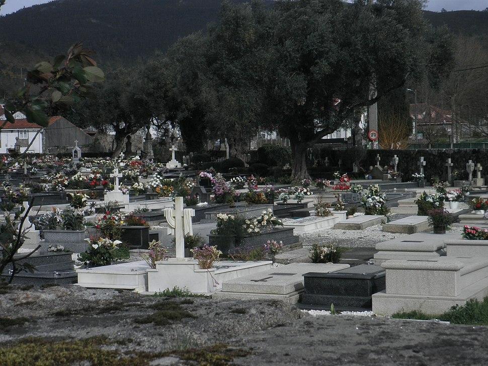 Oliveiras cemiterio de Adina