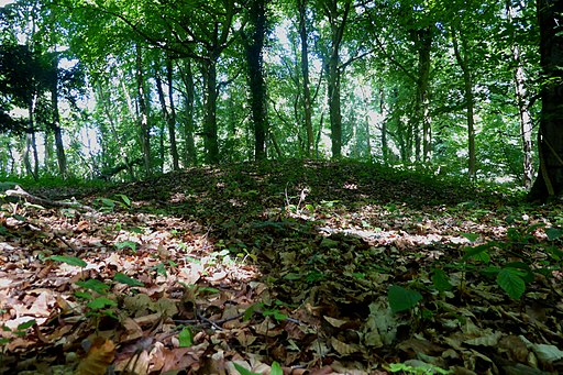 One of the Standish Wood Round Barrows