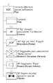Organizzazione COMFOSE.png