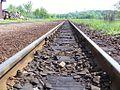 Osoblaha narrow gauge railway CZ 08.jpg