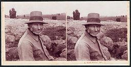 Otto Wolff Stereoskopie, Lüneburger Heide, Ein alter Heidjer (Springhorn aus Wilsede) 1912, Bildseite Kopie