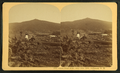 Owl's Head Slide, July 10th, 1885, Jefferson, N.H, from Robert N. Dennis collection of stereoscopic views 2.png