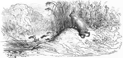 Zając I żaba 1876 Wikiźródła Wolna Biblioteka
