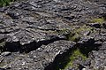 Pahoehoe Lava at Thingvellir in Iceland 2017 A.jpg