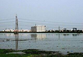 Pallikaranai wetland