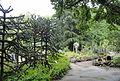 Palmengarten Frankfurt - DSC01769.JPG