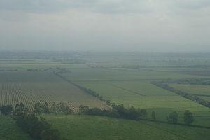 Palmira, Valle del Cauca - Sugar cane plantations.