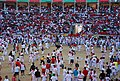 Pamplona-pl-toros-sf2008-carthesian-02.jpg