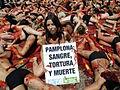 Pamplona encierros San Fermines. Protesta en los San Fermines de Peta y Anima Naturalis (3709681028).jpg
