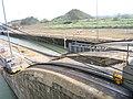 Panama Canal mule 1.JPG
