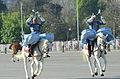 Parada Militar 2014 (15105246139).jpg