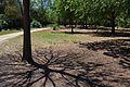 Parc de la Rambleta de València, ombra d'arbre.JPG