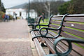 Park Benches.jpg