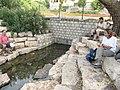 Park HaAmakim 35.jpg