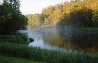 Parnujoki.jpg