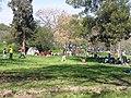 Parque O'Higgins Bicentenario 2010 - panoramio.jpg