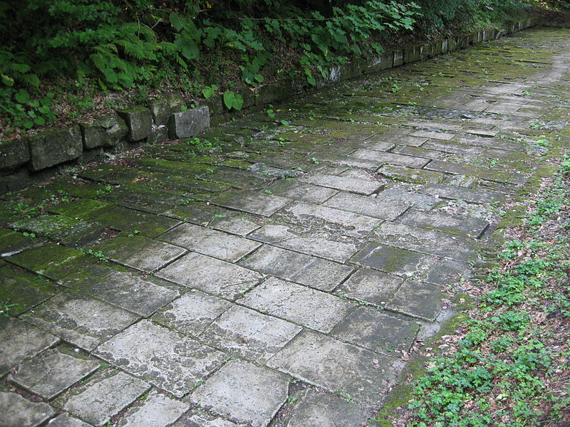 File:Paved Dacian road.JPG